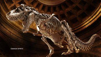 """源自於遠古記憶中的""""肉食性恐龍帝王""""!! 1/32 幻想骨骼系列 暴龍,7月亮相"""